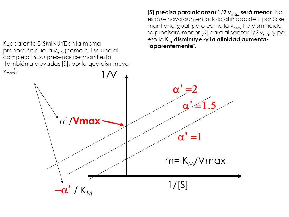 a' =2 a' =1.5 a' =1 -a' / KM 1/V a'/Vmax m= KM/Vmax 1/[S]